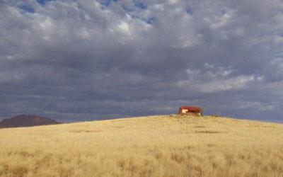 The Desert Cheetah: Part II